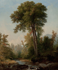 Art Prints of A Natural Monarch by Asher Brown Durand
