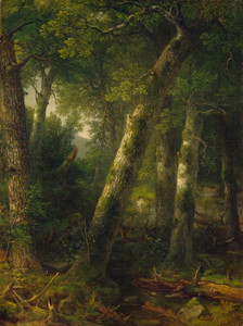 Forest in the Morning Light by Asher Brown Durand | Fine Art Print