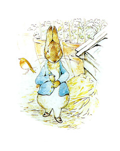 Art Prints of Peter Looks for Parsley in the Garden by Beatrix Potter