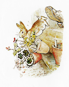 Art Prints of Peter Jumps out of Window to Escape by Beatrix Potter