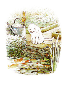 Art Prints of Peter Watches White Cat at Mcgregor's Fish Pond by Beatrix Potter