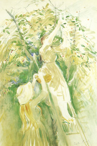 Art Prints of Study for the Cherry Tree by Berthe Morisot