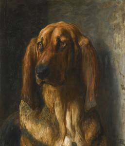 Art Prints of Sir Lancelot, a Bloodhound by Briton Riviere