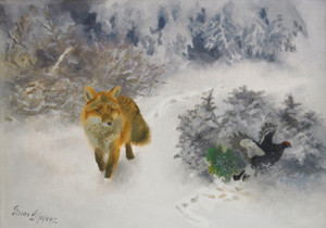 Art Prints of Fox and Black Grouse in a Winter Landscape by Bruno Liljefors