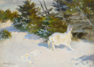 Art Prints of Hare in a Winter Landscape by Bruno Liljefors