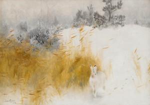 Art Prints of Winter Hare II by Bruno Liljefors