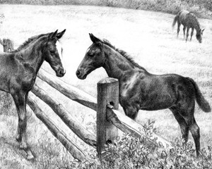 Art Prints of Saying Hello by C.W. Anderson