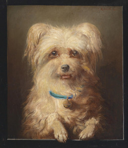 Art Prints of Terrier Portrait by Carl Reichert