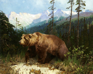 Art Prints of Alaskan Brown Bear, Out of the Shadows by Carl Rungius