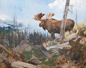 Art Prints of Alaskan Wilderness by Carl Rungius