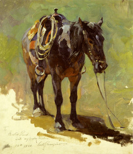 Art Prints of Saddled Pony by Carl Rungius