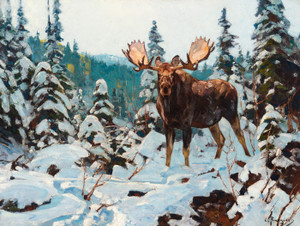 Art Prints of Bull Moose by Carl Rungius