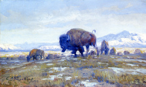 Art Prints of Buffalo Herd by Charles Marion Russell