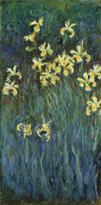 Art Prints of Yellow Irises by Claude Monet