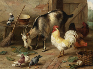 Art Prints of A Goat, Chicken and Doves in a Stable by Edgar Hunt