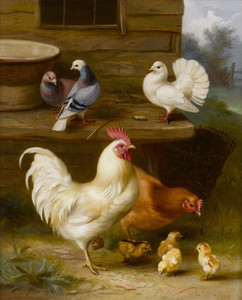 Art Prints of Chickens, Chicks and Pigeons Outside a Cottage by Edgar Hunt