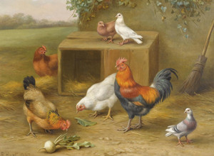 Art Prints of Farmyard Harmony by Edgar Hunt