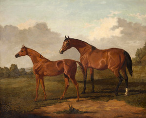 A Bay Mare and Colt in a Landscape by Edmund Bristow | Fine Art Print