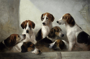 Art Prints of Favorite Hounds by Edward Robert Smythe