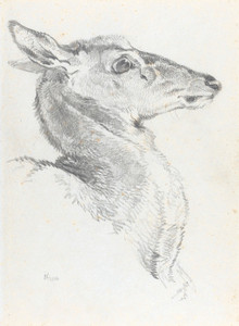 Art Prints of A Study for Head of a Deer for the Chevy Chase by Edwin Henry Landseer