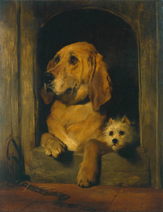 Art Prints of Dignity and Impudence by Edwin Henry Landseer