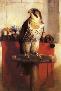 Art Prints of Falcon by Edwin Henry Landseer
