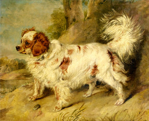 Art Prints of A Dog of the Marlborough Breed by Edwin Henry Landseer