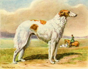 Art Prints of Borzoi by Edwin Megargee