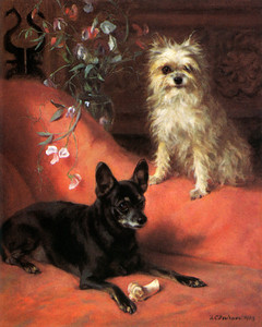 Art Prints of An English Toy Terrier and an Affenpincher by Frances Fairman