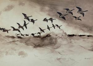 Art Prints of Canadian Geese in Flight by Frank Weston Benson