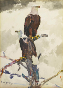Art Prints of Bald Eagles seated against the Sky by Frank Weston Benson