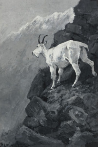 Art Prints of Mountain Goat on a Rocky Ledge by Frederic Remington