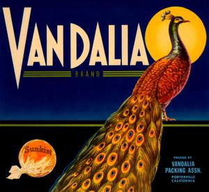 007 Vandalla Brand, Fruit Crate Labels | Fine Art Print