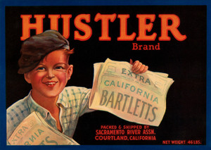 Art Prints of 026 Hustler brand Bartletts Pears, Fruit Crate Labels