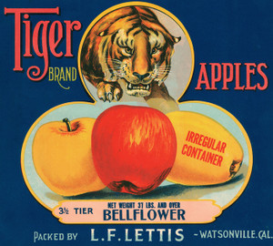 Art Prints of 055 Tiger Apples, Fruit Crate Labels