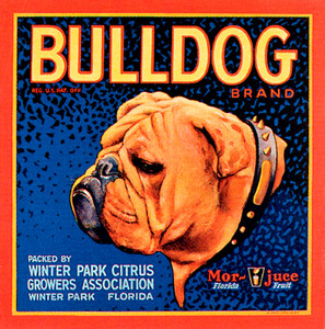 Art Prints of |Art Prints of 091 Bulldog Citrus, Fruit Crate Labels