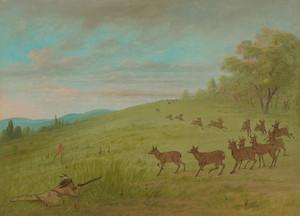Art Prints of Antelope Shooting, Assinneboine by George Catlin