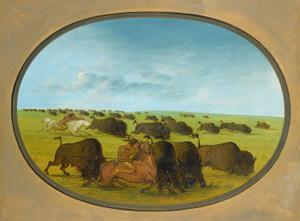 Art Prints of Buffalo Chase with Accidents by George Catlin