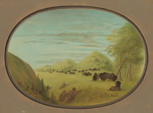 Art Prints of Two Companions Shooting Buffalo by George Catlin