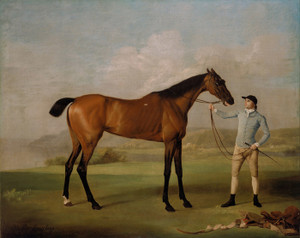 Art Prints of Molly Long Legs by George Stubbs