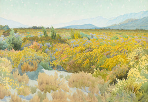 Art Prints of Desert Arizona by Gunnar Widforss