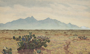 California Desert by Gunnar Widforss | Fine Art Print