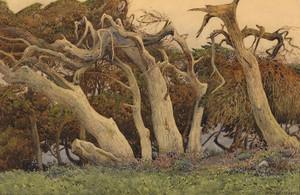 Art Prints of Windswept Trees by Gunnar Widforss