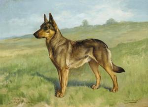 Art Prints of Champion Hertha von Ehrengrund by Gustav Muss-Arnolt