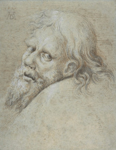 Art Prints of Head of a Bearded Man by Hans Hoffmann