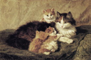 Art Prints of Contentment by Henriette Ronner Knip