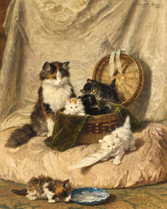 Art Prints of Kittens at Play, No. 3 by Henriette Ronner Knip