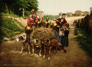 Art Prints of Milksellers, Brussels, Belgium (387184)