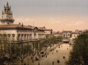 Art Prints of Hotel de Ville Place, Avignon, Provence, France (387492)
