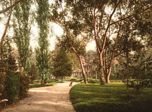 Art Prints of The Park, Vichy, France (387727)
